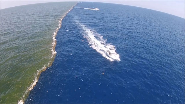 Khoảnh khắc ấn tượng giữa hai đại dương nhìn từ trên cao.