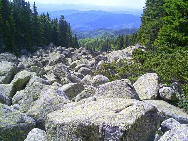 Một dòng sông đá khác ở núi Vitosha, Bulgaria.