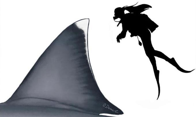 Vây lưng của cá mập Megalodon cao tương đương một người trưởng thành.
