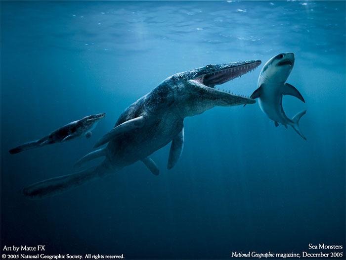 Phác họa hình ảnh bò sát cổ đại Liopleurodon.