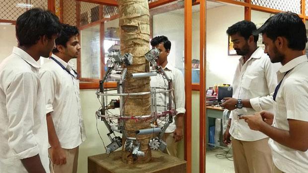 Robot có hình dáng ôm tròn quanh thân dừa