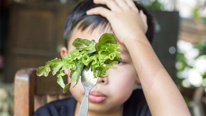 Sự kén ăn chủ yếu do vị giác của bạn .