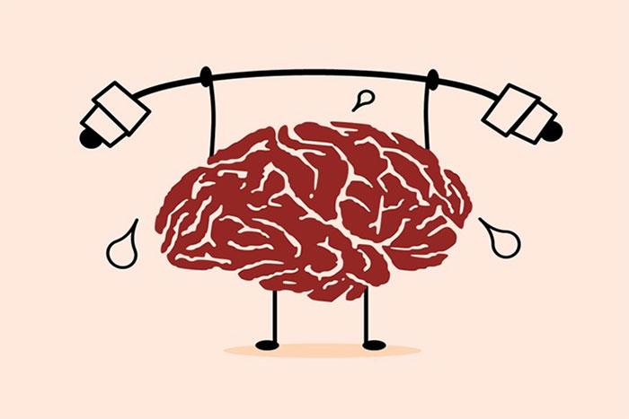 Bộ não chỉ chiếm 2% trọng lượng cơ thể, nhưng tiêu tốn đến 20% năng lượng trong đó