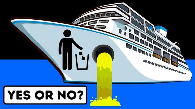 Nước thải trên tàu được xử lý kỹ càng nhằm đảm bảo không gây hại với hệ sinh thái biển.
