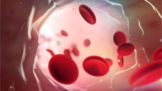 Nhóm máu O cho phép cơ thể chống lại sự tấn công của virus sốt rét.