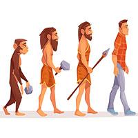 Vì sao nhiều bộ phận không biến mất hoàn toàn khi tiến hóa?