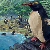 """Chim cánh cụt cổ đại cao bằng người từng sống ở lục địa """"mất tích"""" thứ 8 của Trái Đất"""