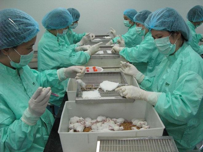 Thử nghiệm vaccine trên chuột của Công ty TNHH Vaccine và sinh phẩm số 1 (VABIOTECH)