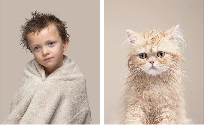 Arlo và mèo Buttercup, giống Cream Persian.