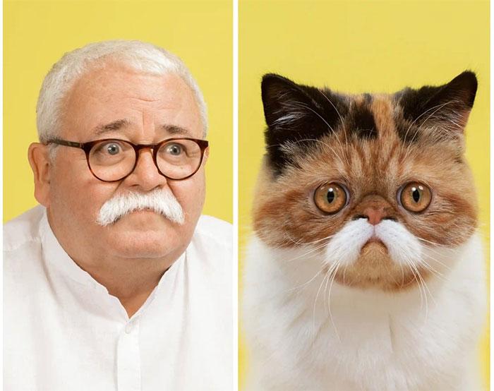 Mèo và người đàn ông có bộ ria màu trắng.