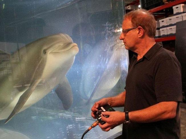 Ông Walt Conti, giám đốc điều hành công ty Edge Innovations bên cạnh chú cá heo robot.