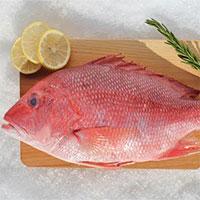 Dấu hiệu nhận biết ngộ độc cá Hồng