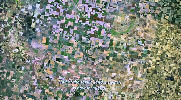 1/2 diện tích đất có thể trồng trọt của trái đất hiện nay là đất nông nghiệp