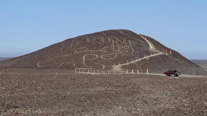 Hình vẽ mèo khổng lồ 2.200 năm trên núi Nazca, Peru.