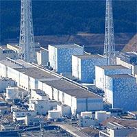 Nước nhiễm xạ ở Fukushima có thể làm biến đổi ADN người
