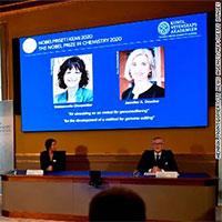 Giải mã công nghệ chỉnh sửa gene giành Nobel Hóa học 2020