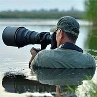 Các nhà làm phim giữ an toàn thế nào khi ghi hình động vật hoang dã? (Phần 2)