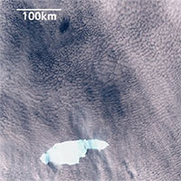 Núi băng trôi lớn nhất thế giới sắp đâm vào hòn đảo Anh