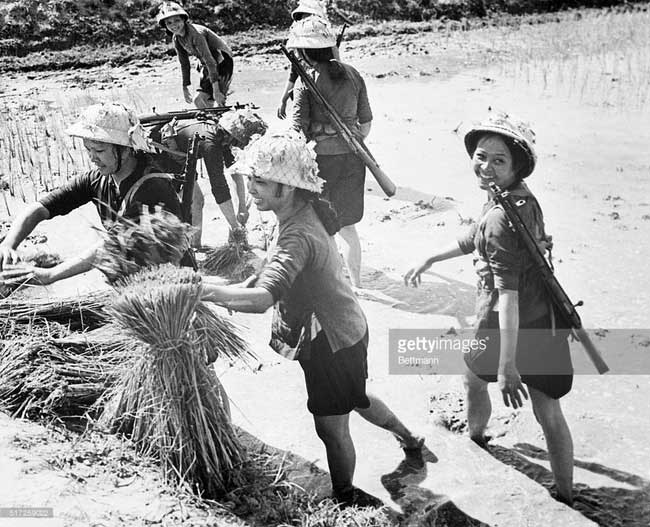 Những người nữ dân quân đi làm ruộng với cây súng trên vai