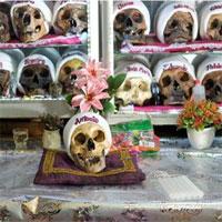 Cách tôn vinh người chết kỳ lạ của người Bolivia