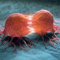Các nhà khoa học tuyên bố tìm ra cách mới chữa khỏi ung thư và không tác dụng phụ