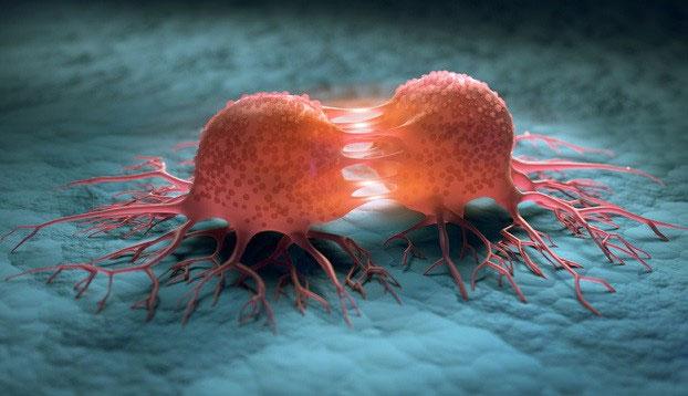 Các nhà khoa học Israel dùng kỹ thuật CRISPR để chữa ung thư