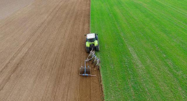 Tại Đức, nhiều nông dân thà bán cát còn hơn trồng nông sản vì lợi nhuận cao
