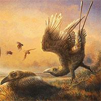 """Hóa thạch tiết lộ loài """"chim răng thỏ"""" kỳ dị sống cùng thời với khủng long"""