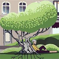Điều gì xảy ra nếu chặt hết cây xanh trong thành phố?