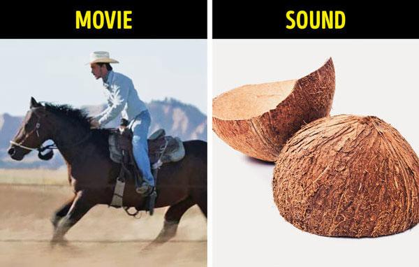 Tiếng ngựa phi – sọ dừa