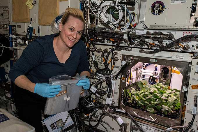 Phi hành gia Kate Rubins chụp hình bên cạnh buồng trồng cải củ trên ISS.