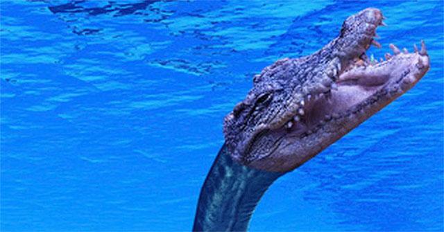 Bí mật về quái vật giống quái vật hồ Loch Ness