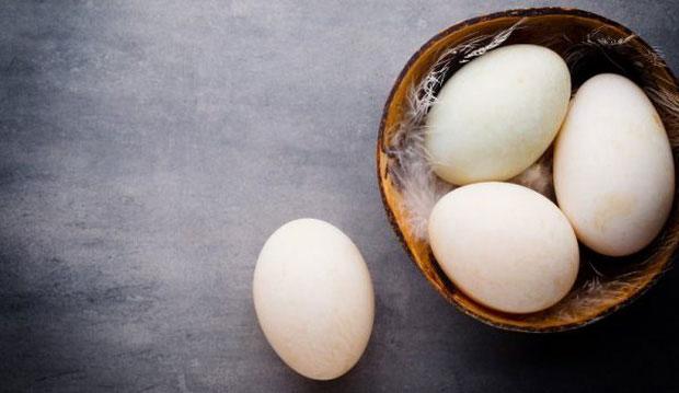 Trứng vịt là loại trứng có năng lượng cao.