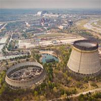 Mức độ phóng xạ không an toàn được tìm thấy trong cây trồng ở Chernobyl