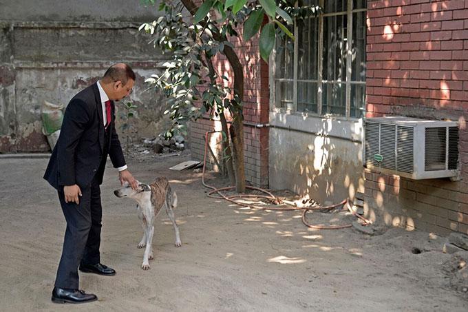 Amin vuốt ve chú chó Sarail của mình tại nhà riêng.