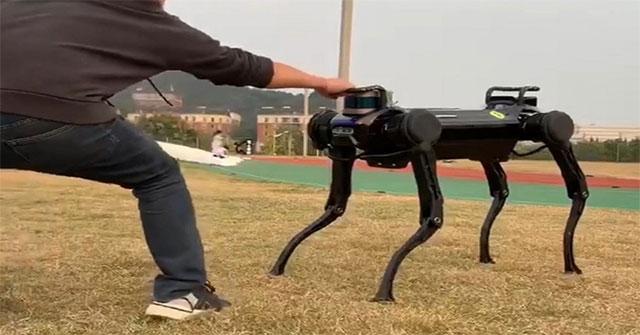 Chó robot có thể tự vệ khi bị người tấn công
