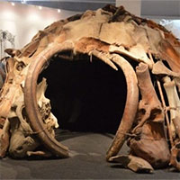 Bí ẩn ngôi nhà 25.000 năm tuổi được dựng từ xương voi ma mút