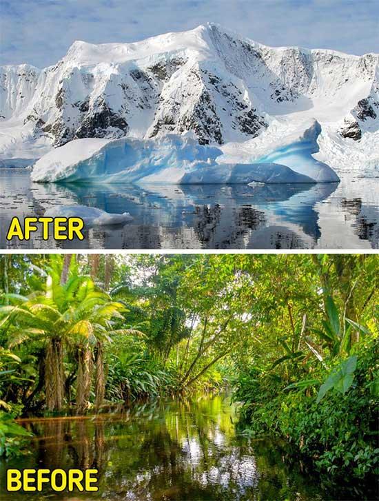 Rất nhiều hóa thạch cho thấy sự tồn tại của động thực vật nhiệt đới tại Nam Cực