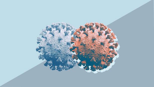 Bất kỳ chủng virus nào cũng có thể trở nên phổ biến, chỉ cần xuất hiện đúng thời điểm.