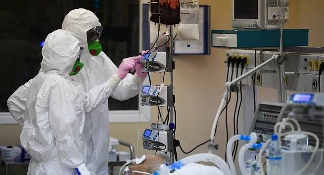 Loài nấm này đều dẫn đến cái chết của bệnh nhân trong phòng chăm sóc đặc biệt.