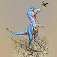 Phục dựng hình ảnh bạo long con từ hóa thạch phôi