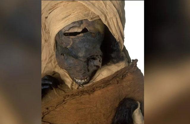 Xác ướp của pharaoh Seqenenre Taa II được tìm thấy vào những năm 1880.