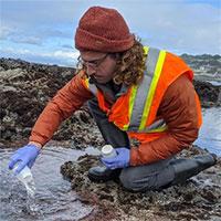 Phương pháp mới dự báo chất lượng nước biển