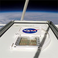 NASA cho hay: Một số sinh vật Trái đất có thể tạm thời sống sót trên sao Hỏa