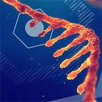 Lần đầu tiên trong lịch sử, các nhà nghiên cứu Israel phát hiện ra loại RNA mới, rất hiếm