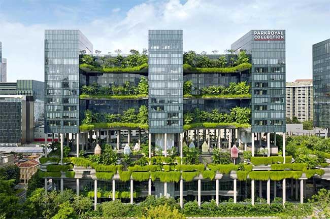 Chính phủ Singapore cũng đang lên kế hoạch trồng 1 triệu cây bổ sung.