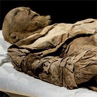 Giải mã xác ướp giám mục được chôn cùng một bào thai cách đây 350 năm