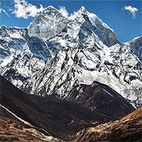 Phát hiện thêm 5 loài động vật mới ở Tây Tạng sau tám năm nghiên cứu và khảo sát