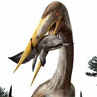 """Giải mã bí mật của """"quái vật bay"""" cổ dài hơn hươu cao cổ"""