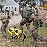 """Xem chó robot trị giá 1,7 tỷ đồng của quân đội Pháp """"trổ tài"""" chiến đấu"""